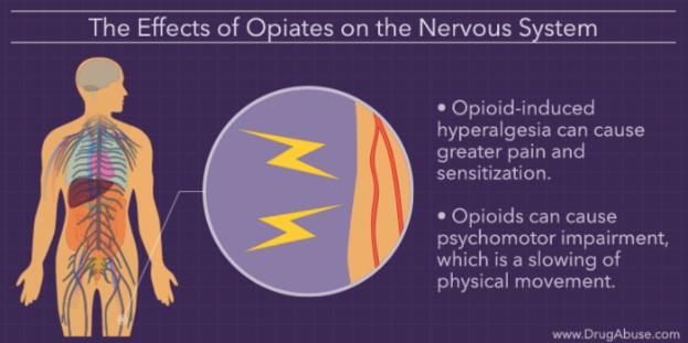 opioids3